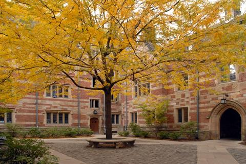 Branford College - Side Courtyard