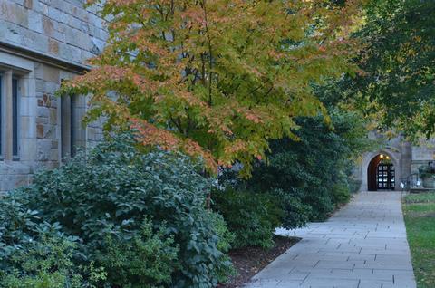 Branford College