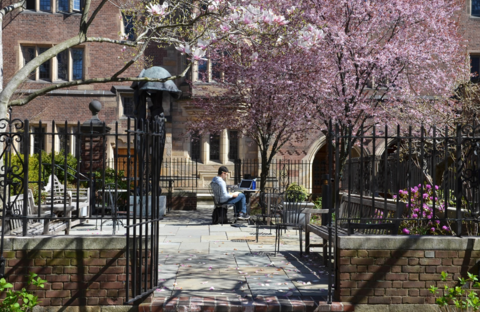 Jonathan Edwards College - Courtyard